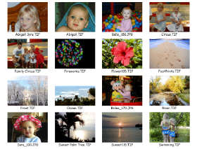 Printing Photo Proof Sheets